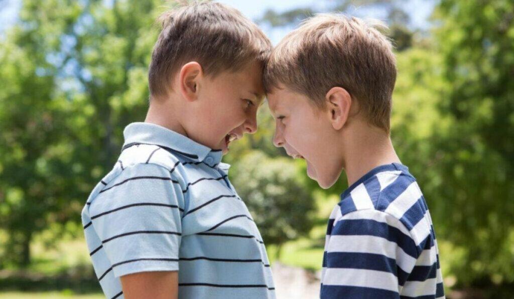 brigas fraternais