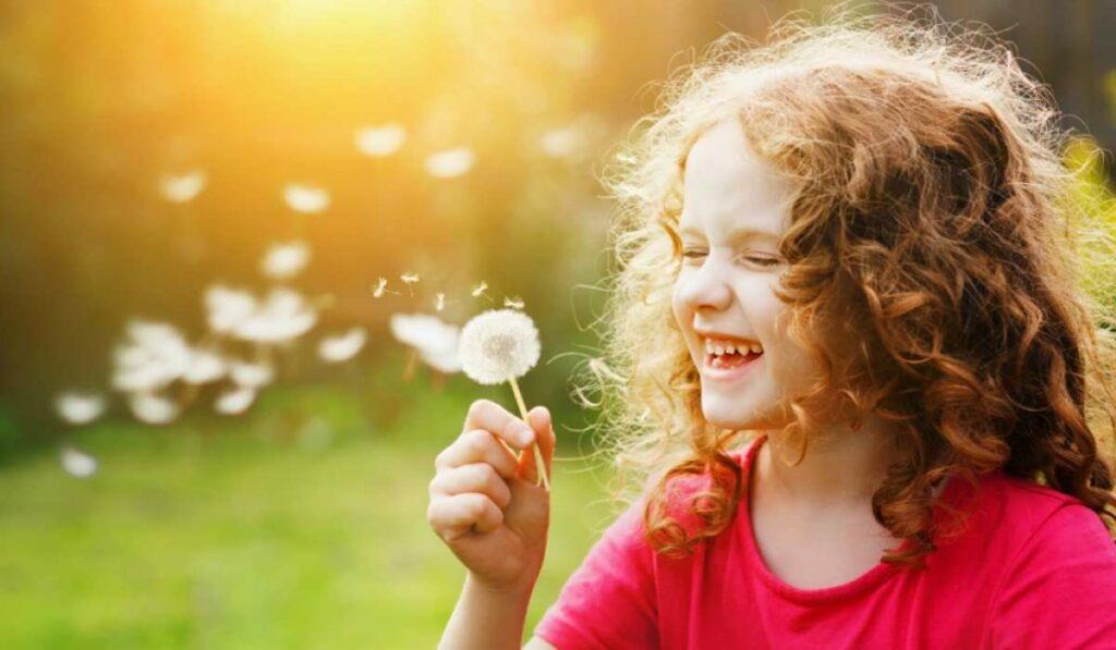 riso e seus benefícios